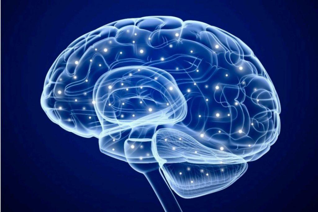 قهوه چگونه مغز را تحریک میکند؟